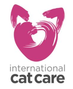 Blog Cat friendly clinic